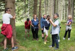 Val Meluzzo senza barriere - Parco Naturale Dolomiti Friulane (Friuli Venezia Giulia)