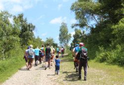 Camminata nel Bosco del Sorriso - Ti aiuto io onlus (Piemonte)