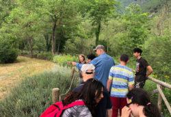 """Escursione lungo la """"Greenway del fiume Sentino"""" - Parco Naturale Gola della Rossa e di Frasassi e Comunità Socio-Educativa Riabilitativa """"C'era l'Acca"""" di Fabriano (Marche)"""