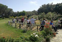 Amore botanico: le piante per la vita - Parco Naturale dei Nebrodi, UNITALSI e Consorzio Banca Vivente del Germoplasma vegetale dei Nebrodi (Sicilia)